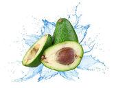 Avocado with water splash — Stock Photo