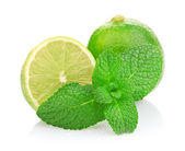 Limes and mint isolated on white background — Foto Stock