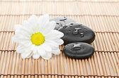 Spa bambu zemin üzerine bir stone — Stok fotoğraf