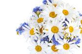 Krásnou kyticí sedmikrásek v váza — Stock fotografie
