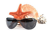 Sun glasses on sea star and shell — Stock Photo