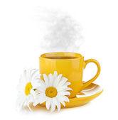 Camomile flower and fresh tea — Stock Photo