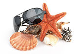 Sun glasses, sea star and shell — Stockfoto