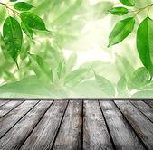 Pavimento in legno — Foto Stock
