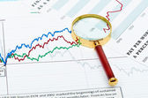 Magnifier on graphs. — Stock Photo