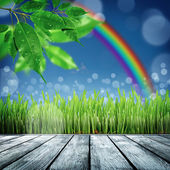 Spring nature background with grass — 图库照片