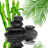 Spa Background -  black stones and bamboo on water — Stock Photo