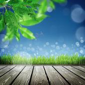 Tle natura wiosna z trawy — Zdjęcie stockowe