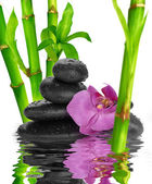 Spa Background black stones on water — Foto de Stock