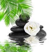 Fondo spa - piedras negras y el bambú en el agua — Foto de Stock