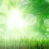 Naturalne tło zielony — Zdjęcie stockowe