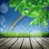 草で春の自然の背景 — ストック写真