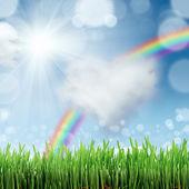 後ろの草と青空と春の自然の背景 — ストック写真