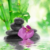 Black stones and bamboo on water — Stock Photo