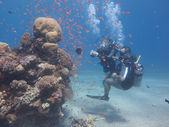 Underwater photographer — Stock Photo