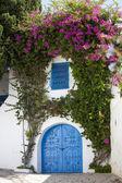 Blue doors and white wall of Sidi Bou Said, Tunisia — Stock Photo