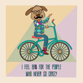 Hipster poster with nerd dog riding bike — Stock Vector