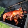 Grilled pig — Stock Photo