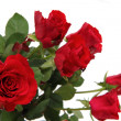Red roses — Stock Photo #14701827