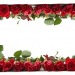 Foto Stock: Red roses frame