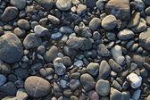 Meer steine hintergrund — Stockfoto