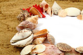 Sand frame with the shells — Stock Photo
