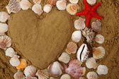 Heart from the sea shells and sand — Stock Photo