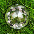 Diamond in the green grass - Stock Photo