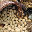 Стоковое фото: Potatoes from small home farm