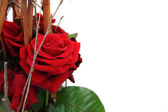 Red rose decoration — Stock Photo