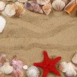 Stock Photo: Summer seshells in yellow sand