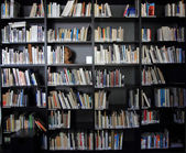 Small library  — Stockfoto