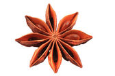 Anise star (spice) isolated  — Stock Photo