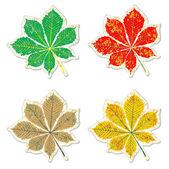 Leaves of chestnut tree grunge sticker — Stock Vector