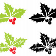 Stock Vector: Holly berry grunge - Christmas symbol