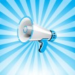 Megaphone on white background — Stock Vector #38147567