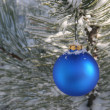 Blue Christmas Ornament in Snowy Pine Tree — Stock Photo #22922590