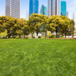 City park with modern building background in shanghai — Foto Stock