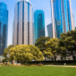 City park with modern building background in shanghai — Stock Photo