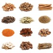 Spices on the white background — Stock Photo
