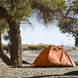 Campsite with Tent in Inner Mongolia — Stock Photo