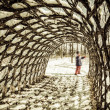 Stock Photo: Walking through tunnel of vines