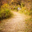 Autumn Pathway — Stock Photo #35088269
