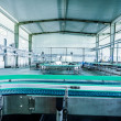 Drinks production plant in China — Stock Photo #39244783