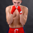 Boxer on a black background — Stockfoto
