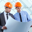 Royalty-Free Stock Photo: Group of architects working on a project