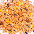Foto Stock: Hamster Food Mix