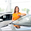 Car Sales — Stock Photo #28512977