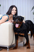 Woman with a Rottweiler dog — Stockfoto
