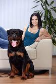 Kobieta z psa rottweiler — Zdjęcie stockowe